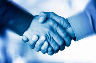 socios de negocio
